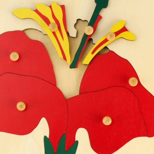 Puzzle de la fleur Montessori