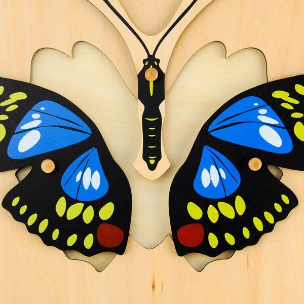 Puzzle Du Papillon