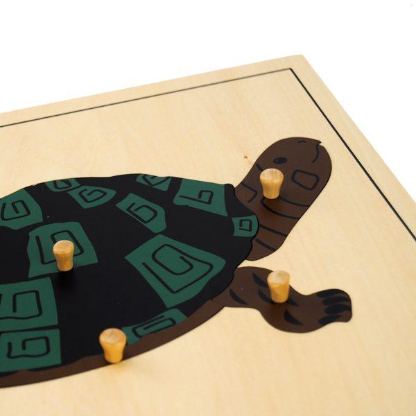 Puzzle de la tortue montessori