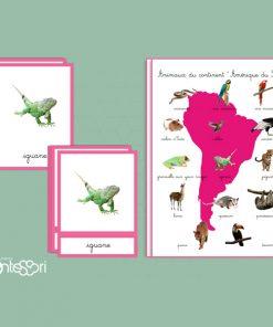 animaux d'Amérique Du Sud
