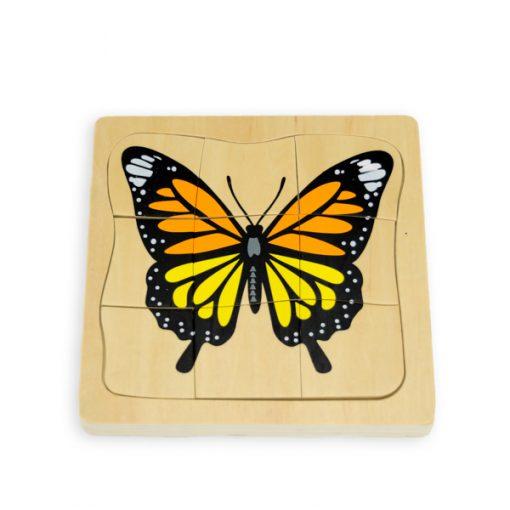 Cycle du Papillon