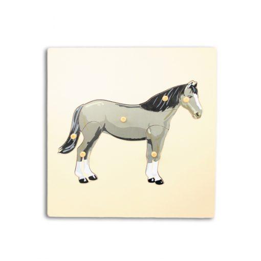 puzzle cheval avec squelette montessori