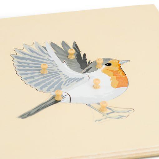 puzzle oiseau montessori squelette